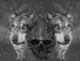 Wolf illustration. Tattoo design over grey background. textured backdrop. Artistic image