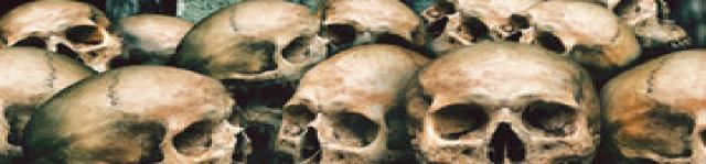 trono dos cranios banner